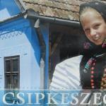 Csipkeszeg Bed & Breakfast Sic / Szék Romania, Sic