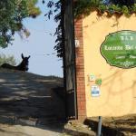 Locanda del Grillo, Cantagrillo