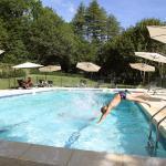 Hotel Pictures: Chateau de Puy Robert, Montignac