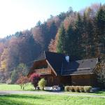 Hotelbilleder: Landhaus Haselmoar, Altmünster