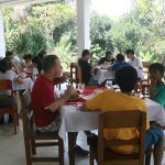 Step Ubud Training Hotel, Payangan
