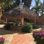 Las Palmas Tropicales Beachfront Rentals, El Pescadero