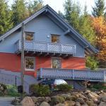 Hotel Pictures: Haus Sonnhof, Herzogau