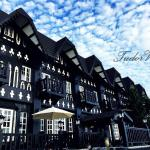 Tudor Dynasty Homestay, Shoufeng