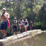 Jungle Monkey Backpackers, Port Saint John's