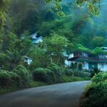 Bellavista Resort Munnar,  Munnar