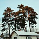 Guest House Uyut Karelii, Latinen