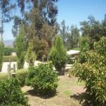 Hotel Pictures: Campo y Playa, Puchuncaví