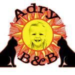 Adry B&B, Rome