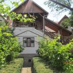 City center villa, Târgu-Mureş