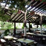 酒店图片: Guest House Dan Kolov, Sennik