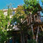 La Casa Del Árbol De Chiloé,  Castro
