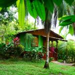 Hotel Pictures: Caribbean house, Cahuita