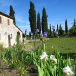 Podere Montemelino, Sarteano