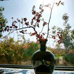 Hotel Pictures: Yanguichao, Dali