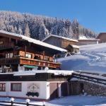 Bergwald, Alpbach
