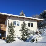 Apartment Am Birkenweg, Oberndorf in Tirol