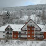 Apartment Spindleruv Mlyn Labska, Špindlerův Mlýn