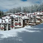 The Castle Complex - Apartment 401,  Pamporovo