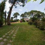 Green Grass, Punta del Este