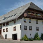 Hotel Pictures: Gasthaus Pension Zum Löwen, Grafenhausen