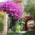 Hostal El Arbol, La Serena