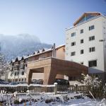 Hotel Pictures: Hotel Weiss Kreuz, Thusis