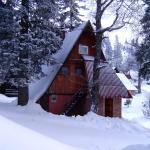 Hotel Pictures: Apartments Snježnik, Jahorina