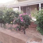 Hotellbilder: My Nannas Place, Broken Hill