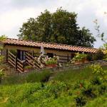 Holiday home Mammolo Ciliegiolo,  Cinigiano