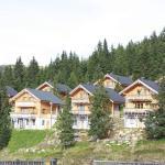 Hotellikuvia: Chalet Koralpe Wellness Chalet, Elsenbrunn
