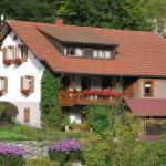 Hotel Pictures: Haus Irene, Todtnau