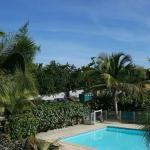 Caribbean Rivera #3, Orient Bay
