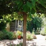 Hotel Pictures: Jasmine Cottage, Prinçay