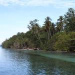Marley Beach Bungalows, Tapokreng