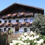 Hotel Pictures: Pröllerhof, Schlitters