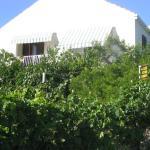 Guest House Kola, Slano