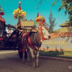 Kumudara Hotel Pagoda View, Bagan