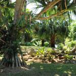 Hotel Pictures: Recantoria, Caraguatatuba