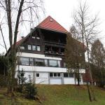 Appartment Kurpark, Schonach