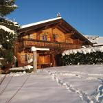 Hotellikuvia: Ferienhaus Höllwart, Pfarrwerfen