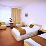 Hotel Pictures: A-Austerlitz Hotel, Brno