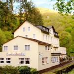 Hotel Pictures: Acron Hotel, Traben-Trarbach