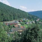 Hotel Waldlust,  Baiersbronn
