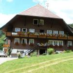 Hotel Pictures: Gästehaus Klingele, Todtmoos