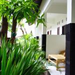 Mango Tree Homestay, Gili Trawangan