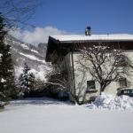 Fotos del hotel: Haus Angerer, Niedernsill