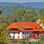 Hotel Pictures: Haus Schlageter, Dachsberg im Schwarzwald