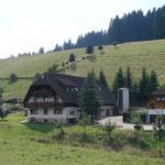Hotel Pictures: Ferienwohnung Armbruster, Sankt Georgen im Schwarzwald