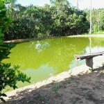Hotel Pictures: Fazenda Da Pedra, Carandaí